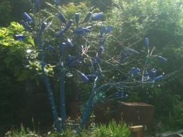 bluefar